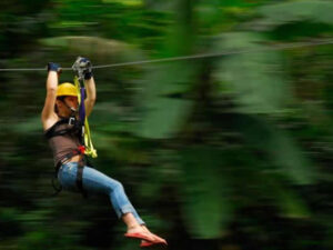 Zip-Line & Natural Reserve