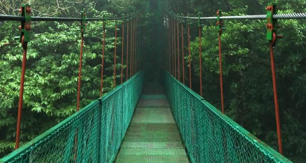 Costa Rica Jungle Experience